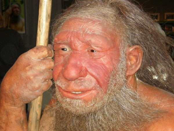 Were social networks humanity's edge over Neanderthals? « Vampyre ...