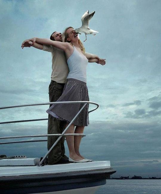 funny-titanic-scene-seagull-eye