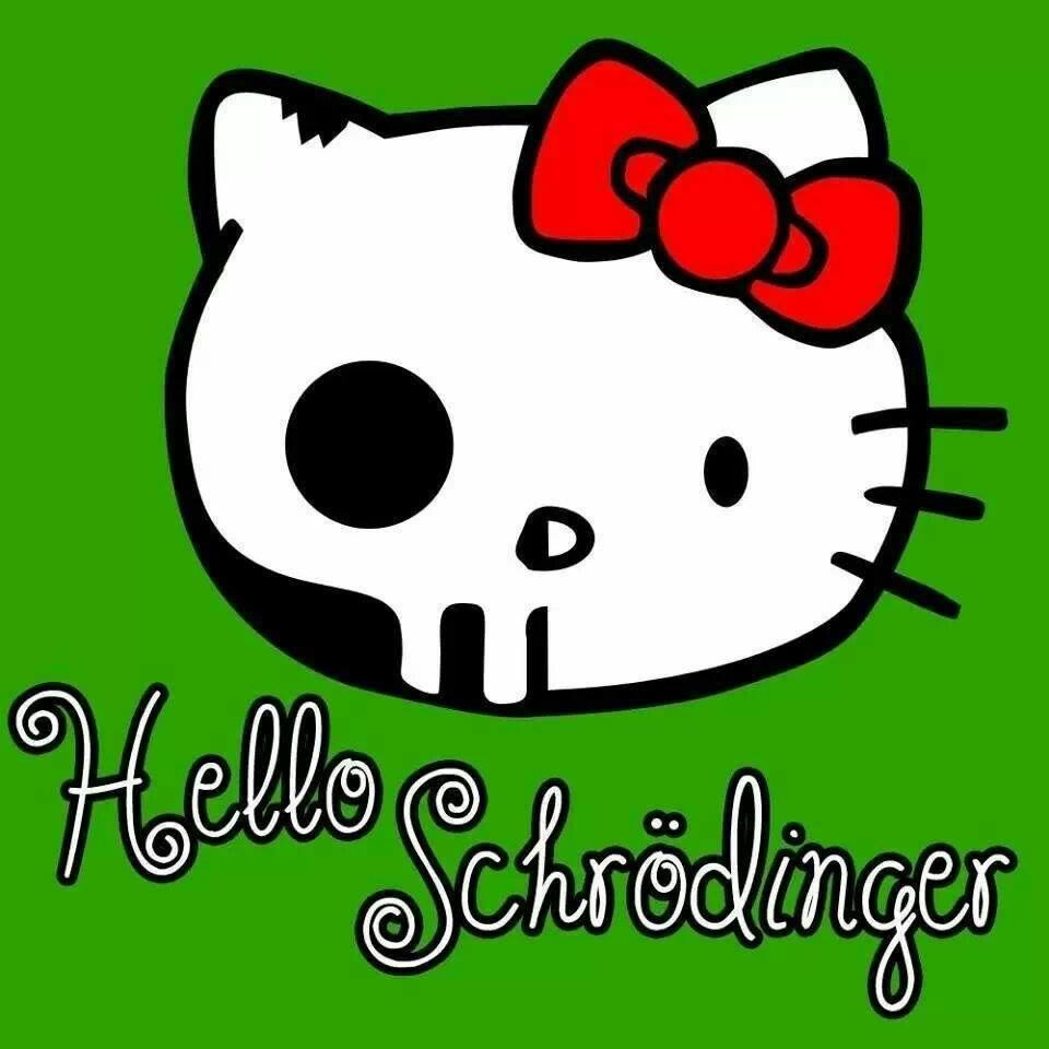 I Love Nerd Humour (7): Hello Schrödinger's Kitty